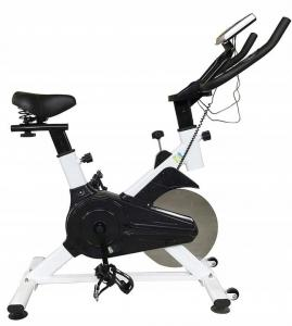 Rower treningowy spiningowy Fit4Home S001 11kg